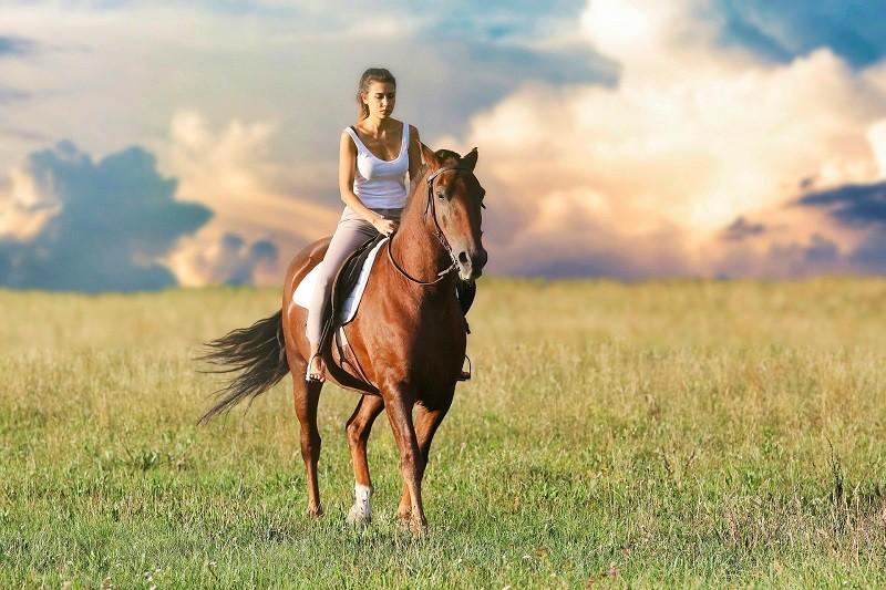 иппотерапия верхом на лошади
